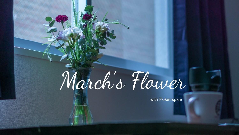 【今月の花 3月】「丸葉ユーカリ×矢車菊×タラスピ×フリージア」〜いつもの部屋に繊細な空気を醸し出す