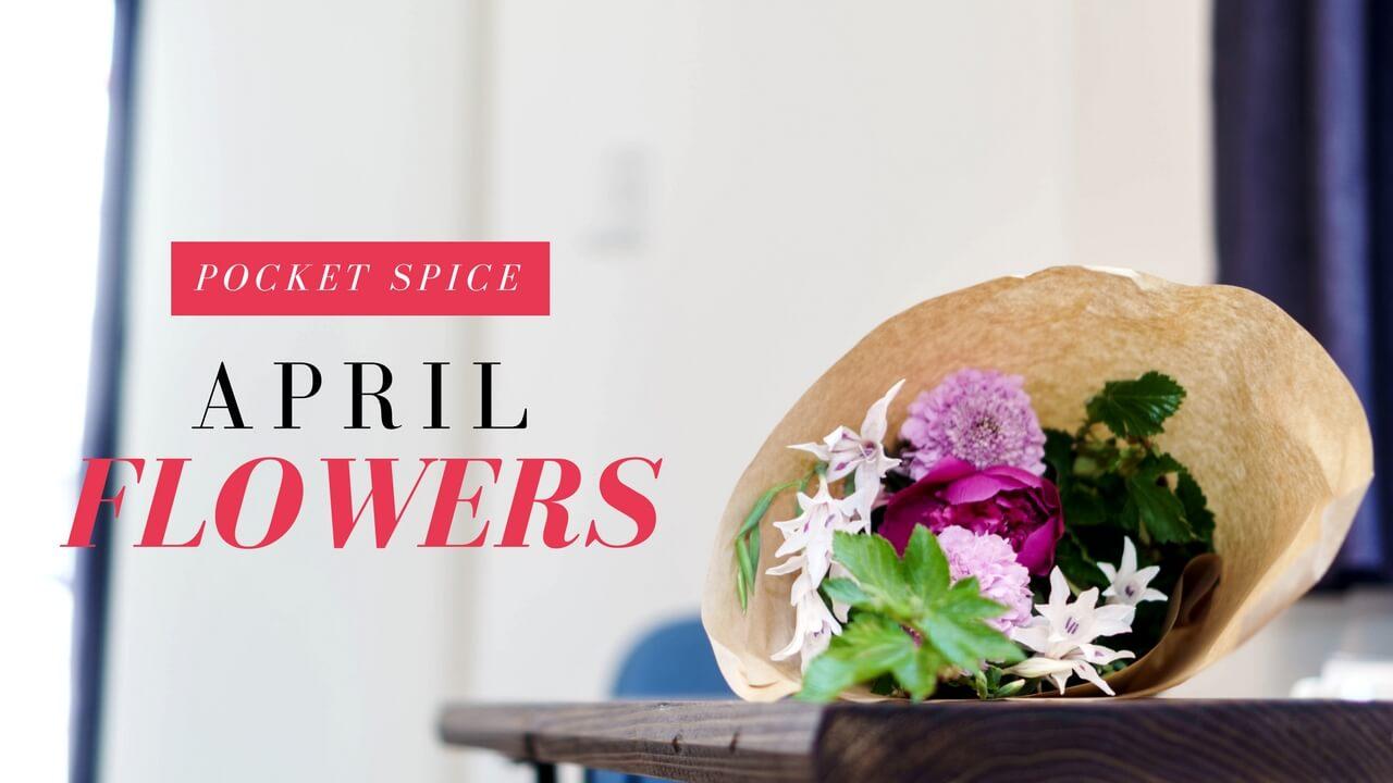 【今月の花4月】「シャクヤク×スカビオサ×グラジオラス×木苺」〜彩り鮮やか!元気になる呪文の花たち。