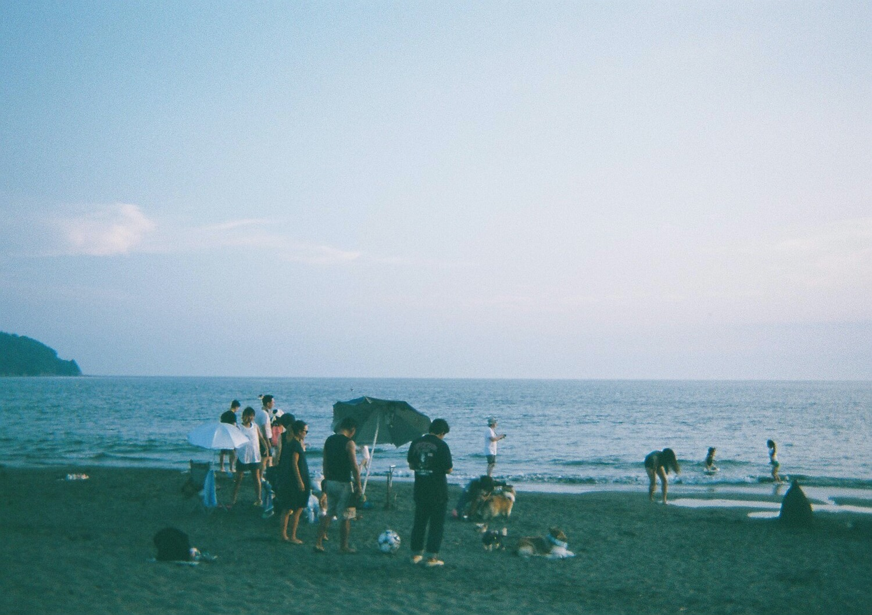写ルンです400作例 鎌倉の街並み、片瀬江ノ島の海